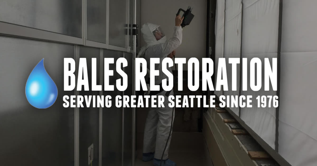 George Travis | Bales Restoration
